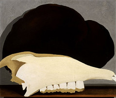 1930-Jawbone and Fungus