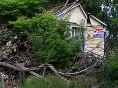 Proposed Demolition
