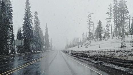 Snow on Santiam Pass