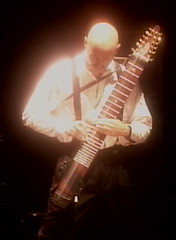 Chapman Stick - King Crimson: Deja Vroom (2)