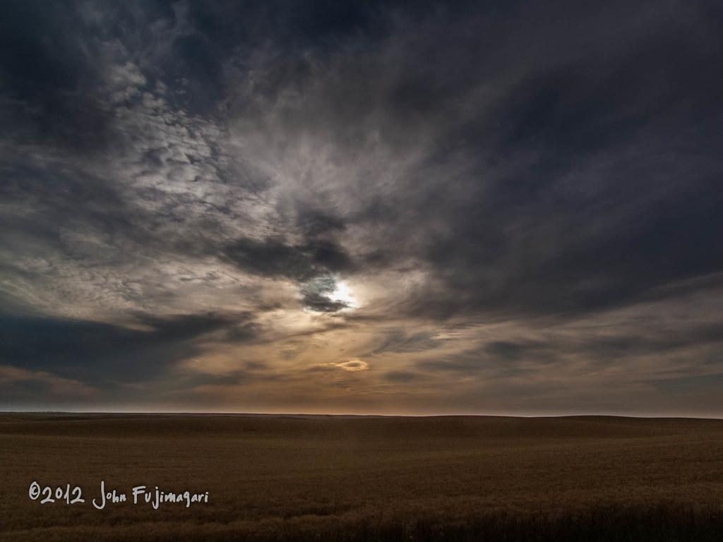 Wheat Field Evening
