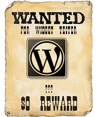 Wanted Widget Tester