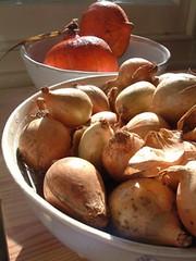 Squash and pickling onions