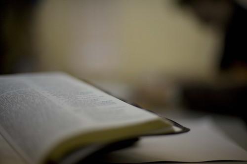 Sitting under the word