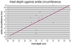 heel vs ankle