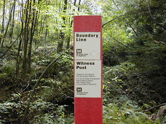 Image result for witness post