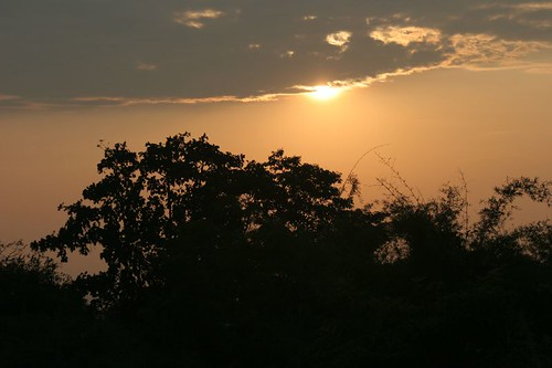 IMG_0014 Sunset at Bannerghatta