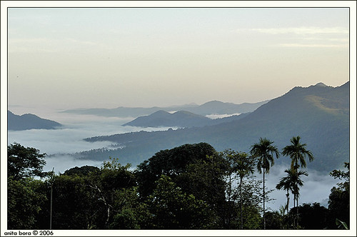 Waking up to the Western Ghats