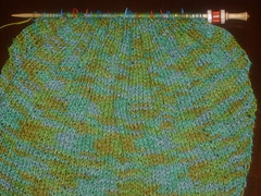 clapotis scarf (knitty.com)