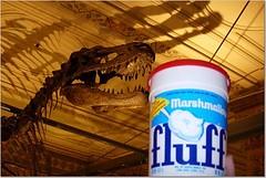 Fluff and dinosaur