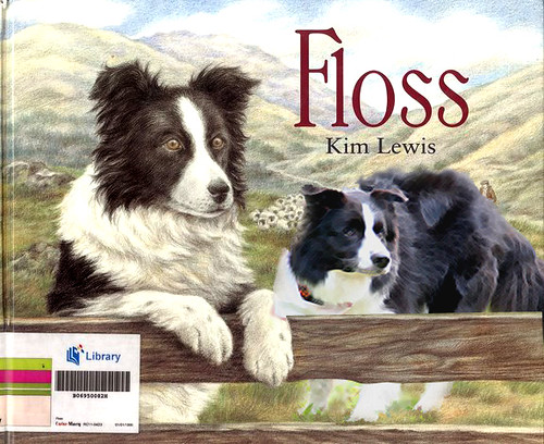 king and floss book cover
