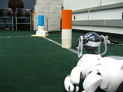 Sony Aibo dogs for robotics