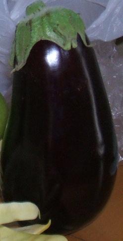 Eggyplant