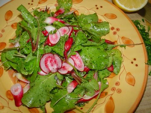 radish salad2