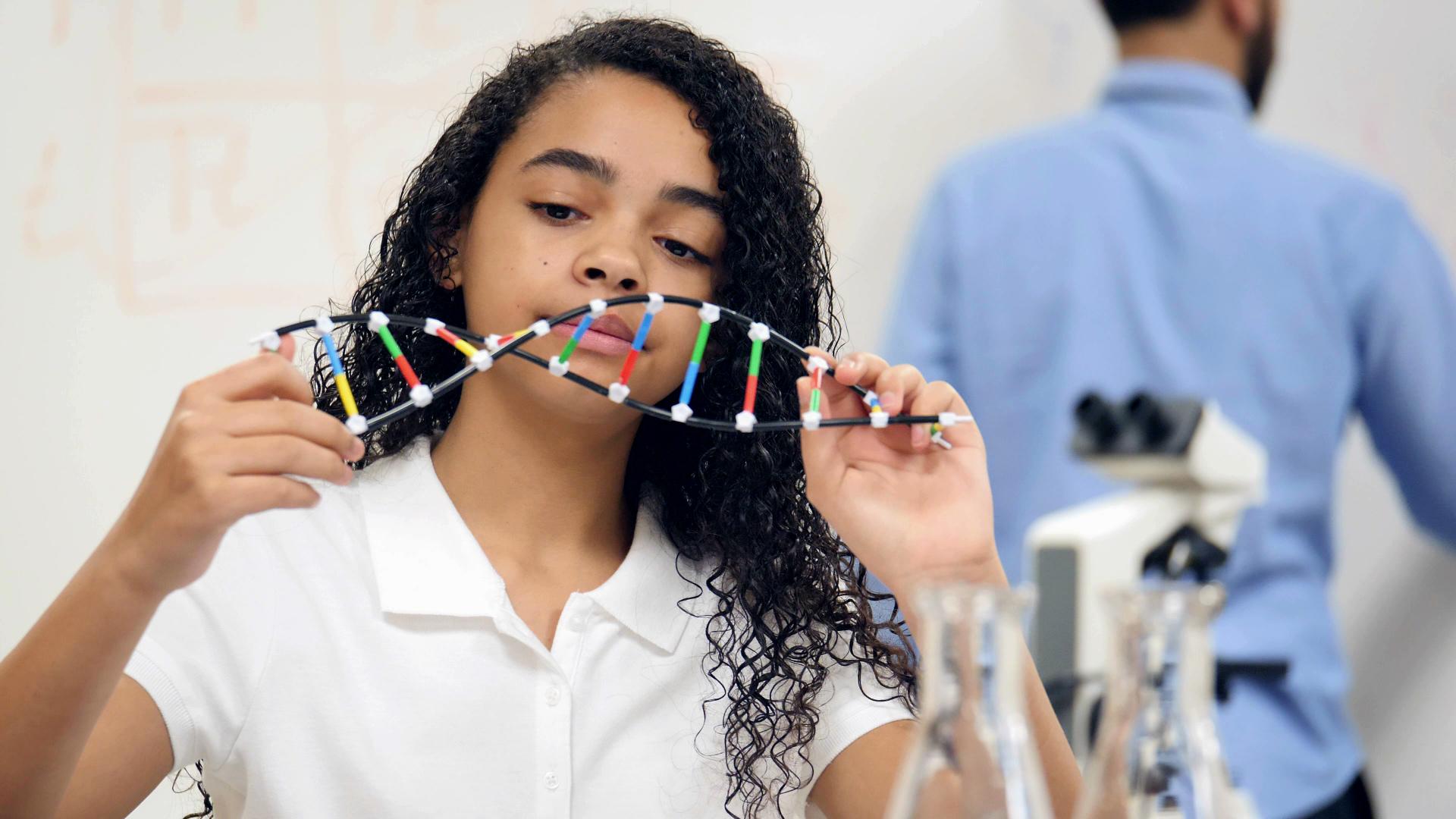 Genetic Traits Worksheet 3rd Grade