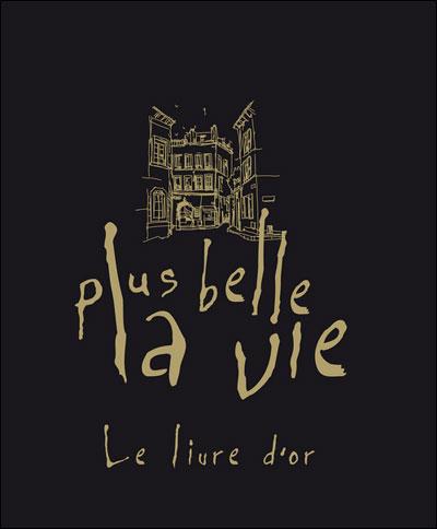 Livre Plus Belle La Vie : livre, belle, Belle, Livre, Collectif, Broché, Achat
