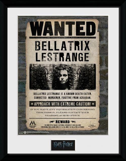 Avis De Recherche Harry Potter : recherche, harry, potter, Harry, Potter, Poster, Collection, Encadré, Recherche,, Bellatrix, Lestrange, (40x30, Poster/affiche, Encadré,