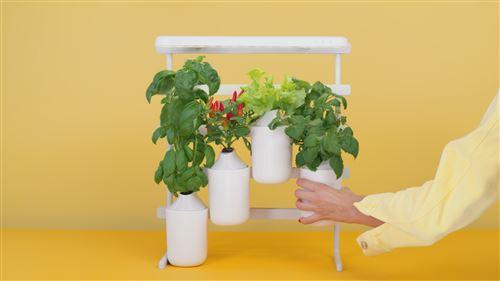modulo le potager d interieur evolutif de pret a pousser