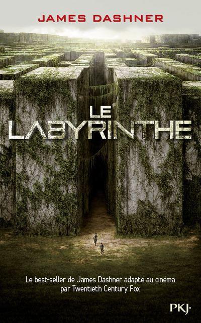 """Résultat de recherche d'images pour """"livre le labyrinthe"""""""