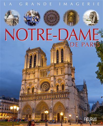 C'est Pas Sorcier Notre Dame De Paris : c'est, sorcier, notre, paris, Notre-Dame, Paris, Cartonné, Sabine, Boccador, Achat, Livre