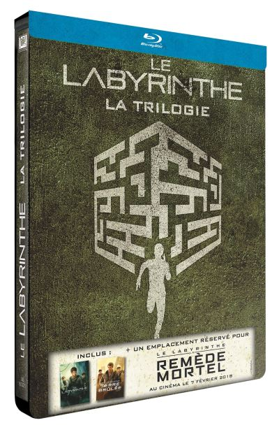 Le Labyrinthe (The Maze Runner)  Le-Labyrinthe-Le-Labyrinthe-La-Terre-Brulee-Edition-Limitee-Steelbook-Blu-Ray