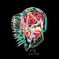 Nothing As The Ideal - All Them Witches - CD album - Achat & prix | fnac