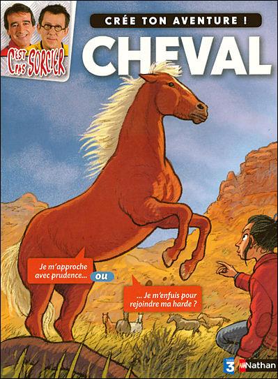 C Est Pas Sorcier Le Cheval : sorcier, cheval, C'est, Sorcier, D'être..., Cheval, Collectif, Broché, Achat, Livre