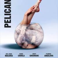 Recomandare de teatru - Pelicanul