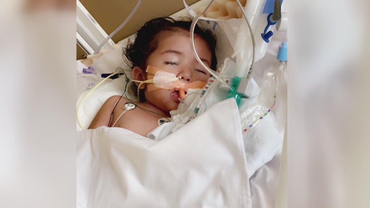 3-year-old Azusa girl fighting for her life after contracting more ...