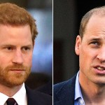Prince William, Prince Harry still have a 'pretty difficult' relationship despite reunion, royal expert claims 💥👩💥