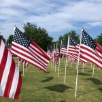 St. Louis' Forest Park honors thousands of 9/11 heroes with 'Flags of Valor' display 💥💥