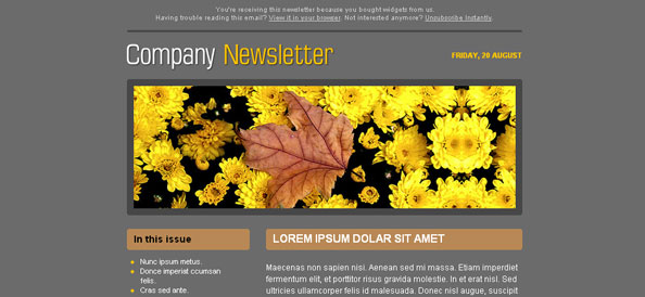 Dark Company Newsletter Left Sidebar