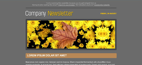 Dark Gray Free Company Newsletter