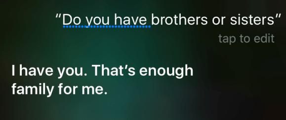 siri brothers