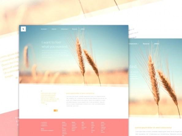 Organic-PSD-Web-Template-Main-600x450