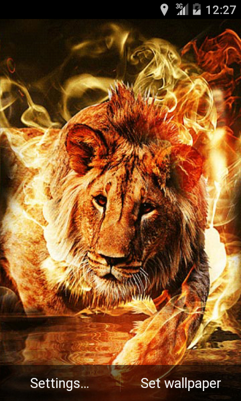 Falling Leaves Live Wallpaper For Android Free Fire Lion Live Wallpaper Apk Download For Android