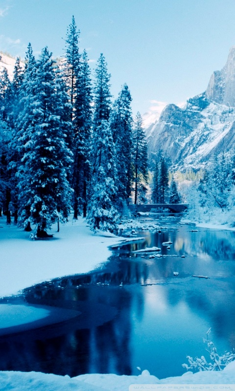 Iphone X Live Wallpaper App Free Winter Landscapes Wallpapers Apk Download For Android