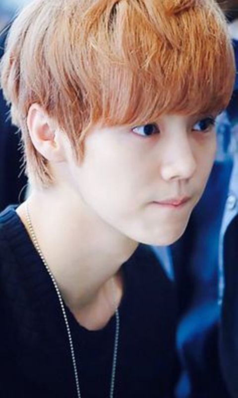 Cute Boy Wallpaper Free Download Free Exo Luhan Cute Wallpaper Apk Download For Android