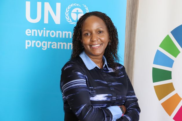 Joyce Msuya, the Deputy Executive Director for the UN Environment Programme (UNEP), says environmental issues are development issues and therefore are everybody's issues. Credit: Isaiah Esipisu/IPS