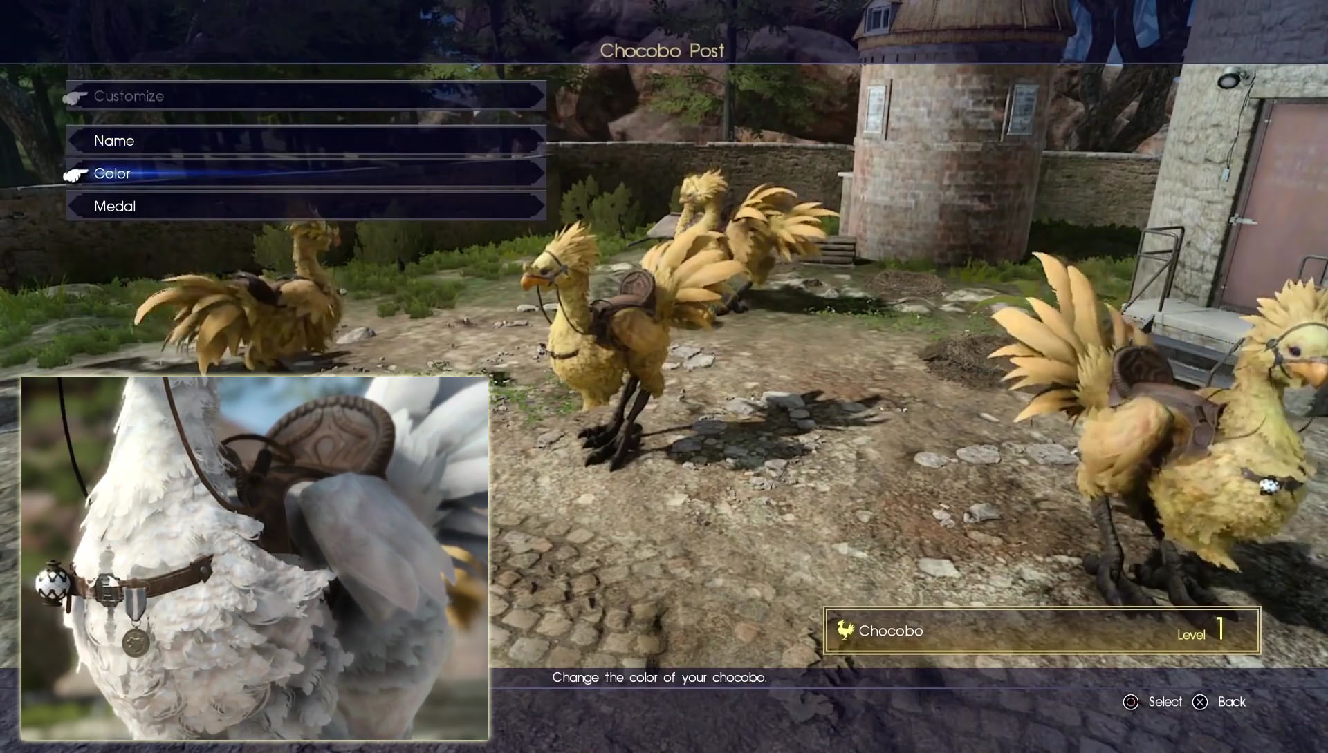 Final Fantasy XV Chocobos Everything You Need To Know
