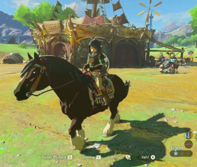Zelda Breath Of The Wild Taming Horses