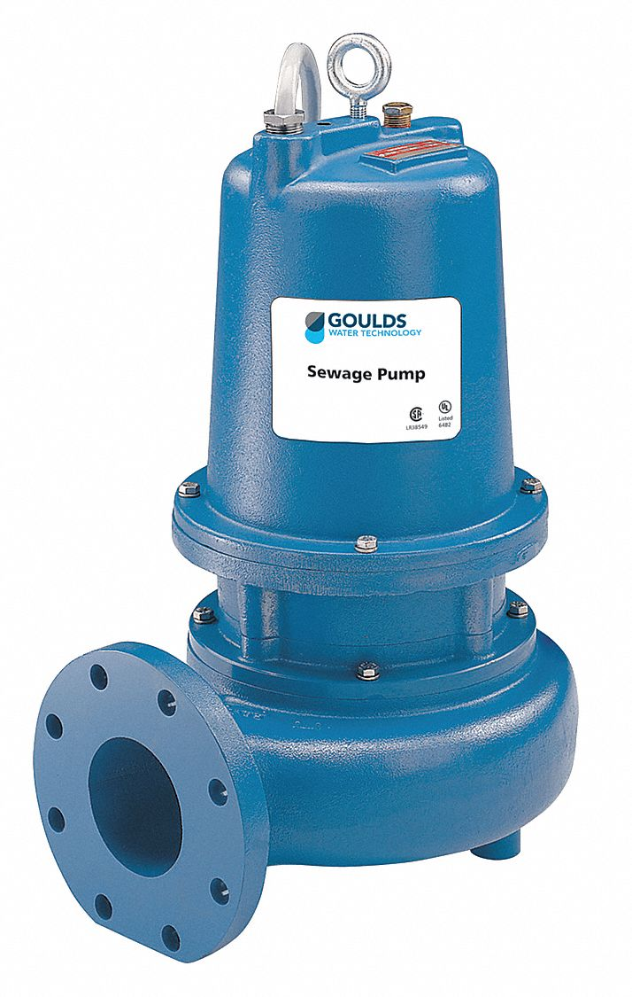 GOULDS WATER TECHNOLOGY 3 HP Manual Submersible Sewage