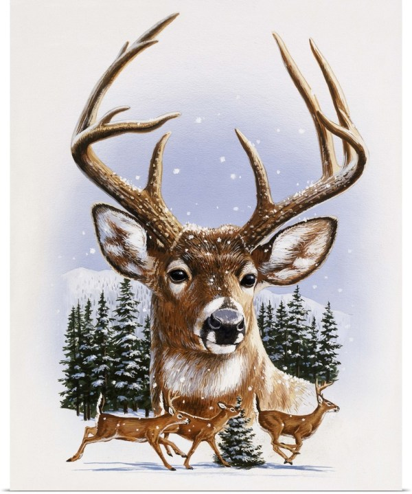 Poster Print Wall Art Entitled Whitetail Deer Montage Winter