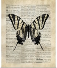 Poster Print Wall Art entitled Vintage Dictionary Art ...