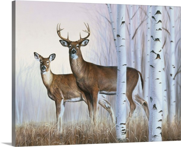 Premium Thick-wrap Canvas Wall Art Entitled Deer In Birch Woods