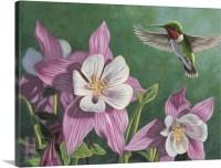 Hummingbird Pink - Columbine Wall Art, Canvas Prints ...