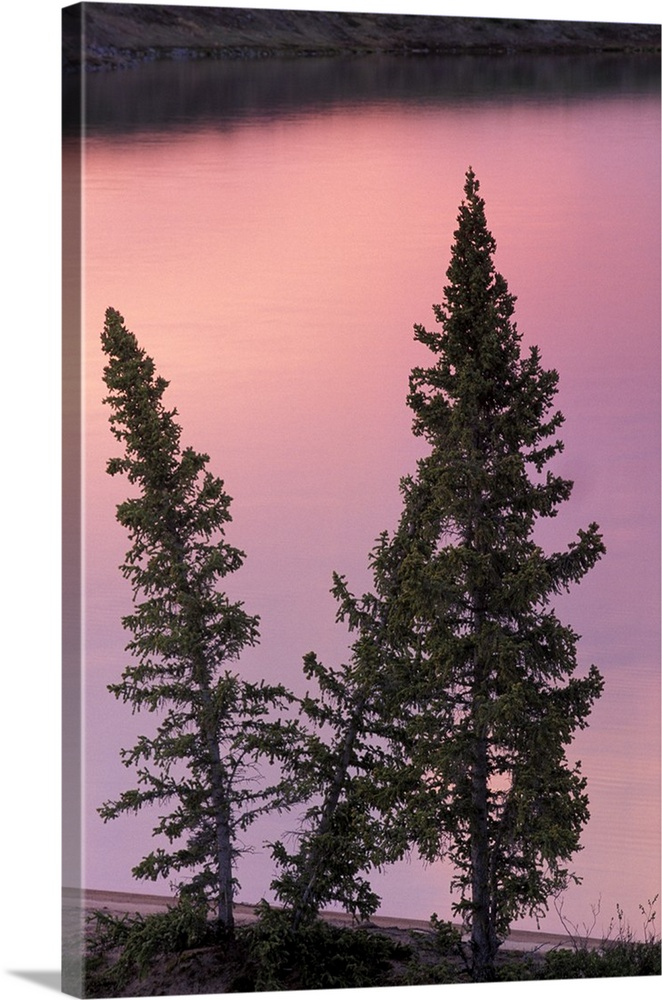 North America Canada Northwest Territories Landscape Trees And Lake Wall Art Canvas Prints
