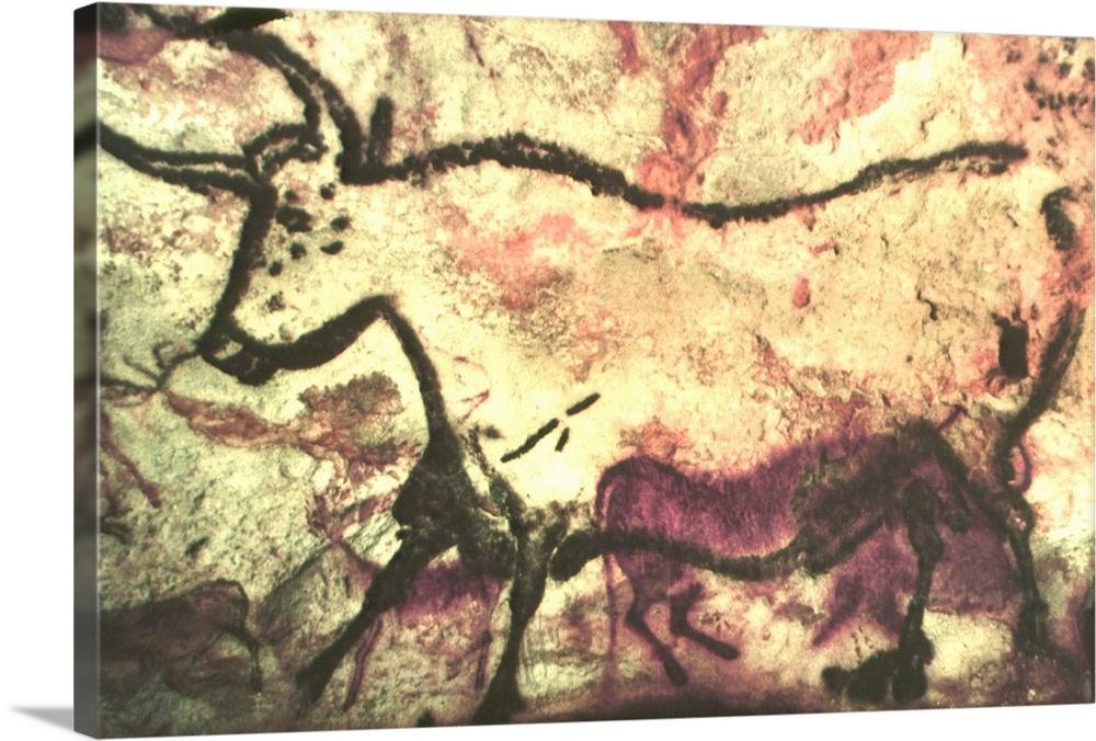 White Bull Prehistoric Cave Painting Lascaux France