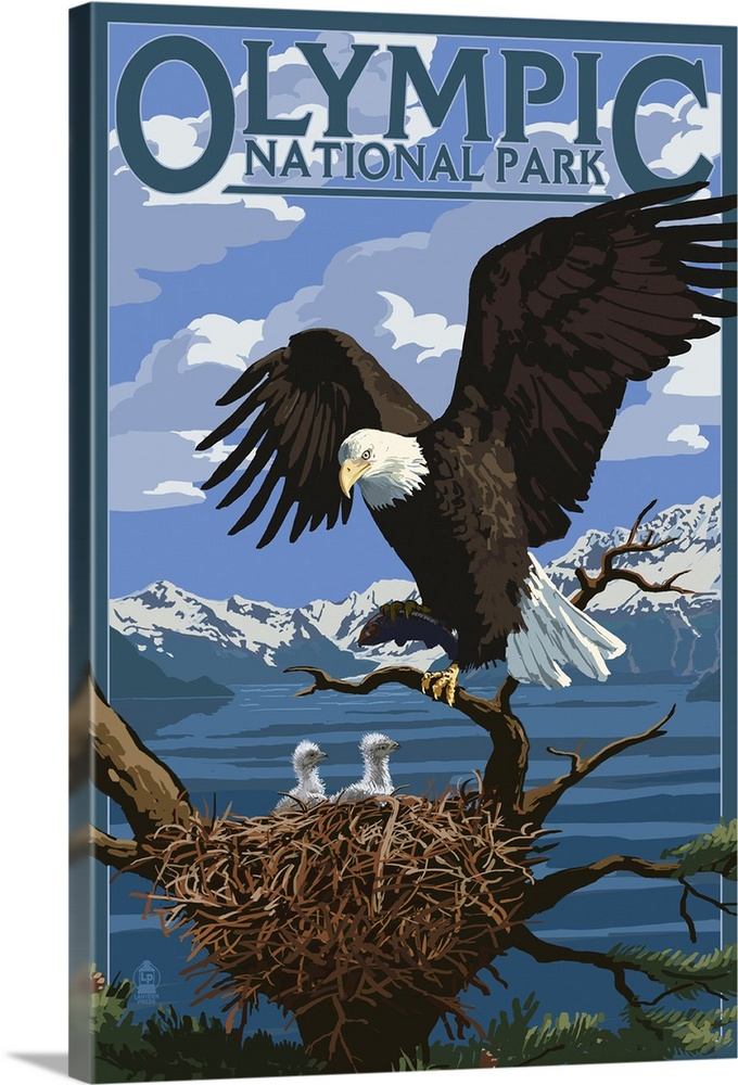 olympic national park eagle and chicks retro travel poster solid faced canvas print