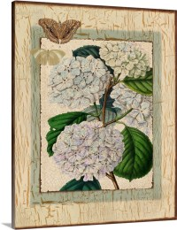 Shabby Chic Hydrangea Wall Art, Canvas Prints, Framed ...